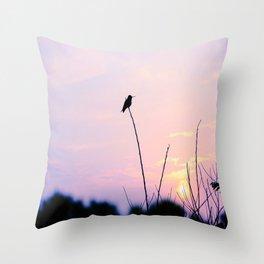 Humming Bird Silhouette  Throw Pillow