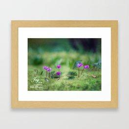 In a Secret Garden Framed Art Print