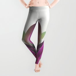 Boat Lily Leggings