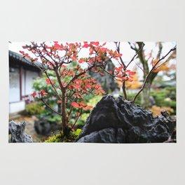 little garden Rug