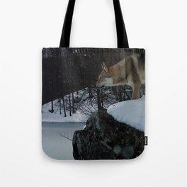 Artic time Tote Bag