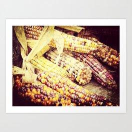 Colorful Corn III Art Print
