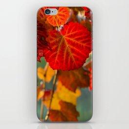 Autumn leaves 1 iPhone Skin