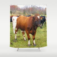 cows Shower Curtains featuring Cows by AstridJN