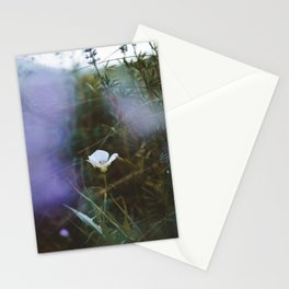 Colorado Mariposa Lily Stationery Cards