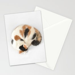 Sleeping Calico Cat Stationery Cards