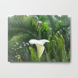 Nairobi flower and ferns Metal Print