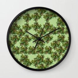 Tulip_Succulent_Crassula capitella Wall Clock