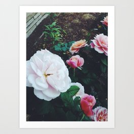 Floral Thoughts Art Print