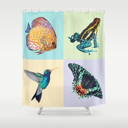 Colibri Frog Fishie Moth Animal Illustration Shower Curtain