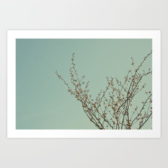 Branches 1 Art Print