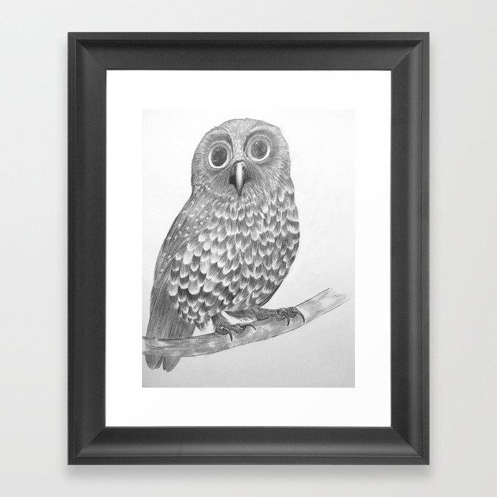 Little Morepork Owl Framed Art Print