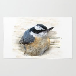 Red-breasted Nuthatch Rug