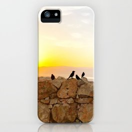 Sunrise birds of the Judean Desert iPhone Case