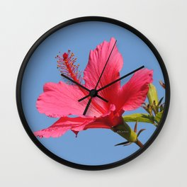 The Neighbor's Pink Hibiscus Wall Clock