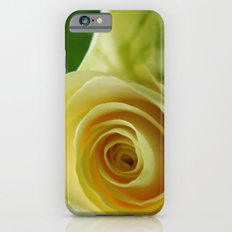 Yellow Roses #12 Slim Case iPhone 6s