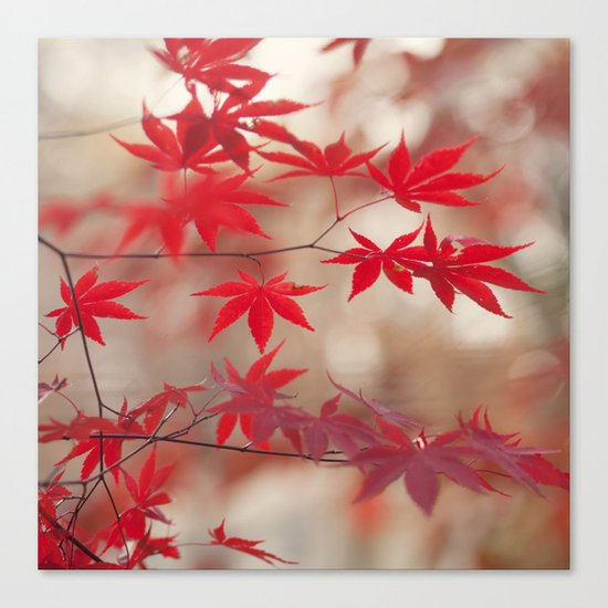 Cream and Red Canvas Print