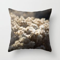 Winter's Asters Throw Pillow