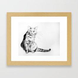 ちょっとしぶい猫 Framed Art Print