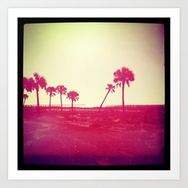 palm trees sunset Art Print