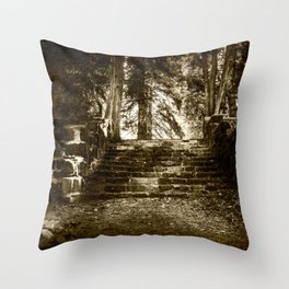 Ruin, Very Old Steps in Forest Throw Pillow