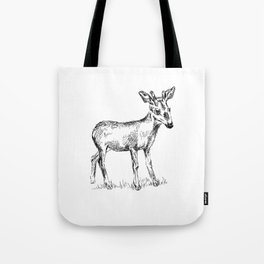 Young deer black and white sketch Tote Bag