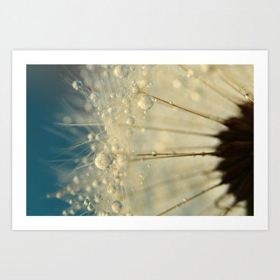 Dandelion with Blue Art Print
