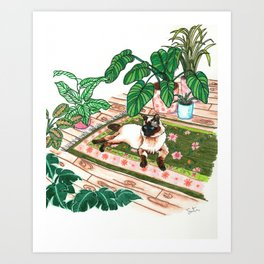 Lounging Siamese and Philodendrons Art Print