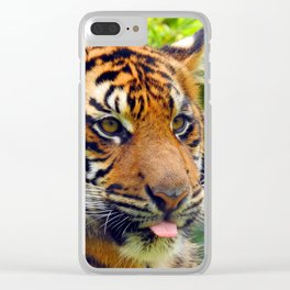 Blep Clear iPhone Case