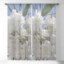 Nerium Oleander White Sheer Curtain
