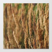grass Canvas Prints featuring grass by Artemio Studio