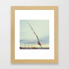 delicacy Framed Art Print