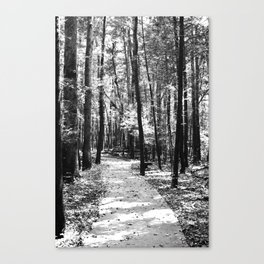 Path Through the Trees Canvas Print