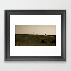 Three donkeys Framed Art Print