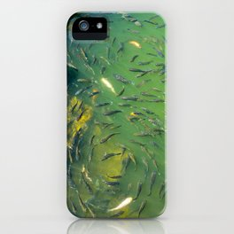 Infinity Fish iPhone Case