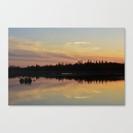 Creamsicle Canvas Print