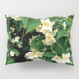 White Jasmin Bush in Bloom Pillow Sham