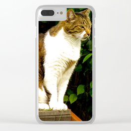 """Felis Catus"" by ICA PAVON Clear iPhone Case"