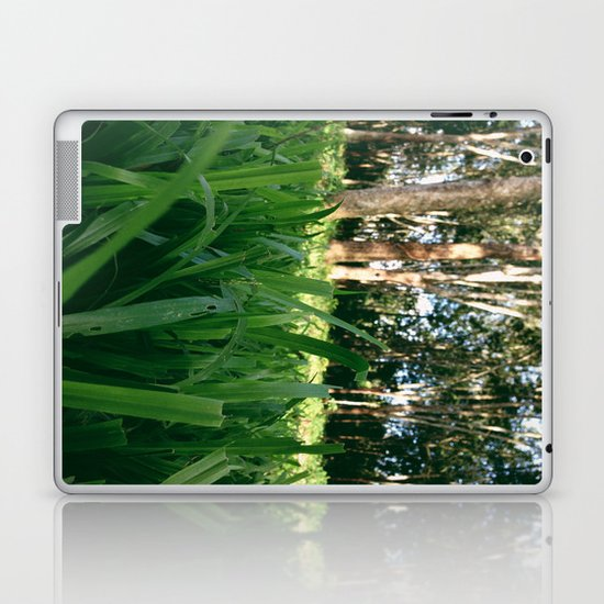 Bed of Grass Laptop & iPad Skin