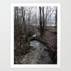 Stream. Art Print