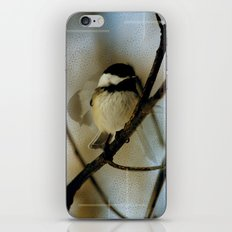 Black Capped Chickadee in motion with speckles iPhone & iPod Skin