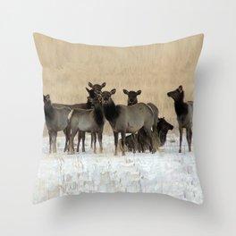 Cow Elk in a Bunch Throw Pillow