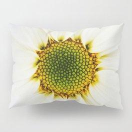 Center Of Attention Pillow Sham