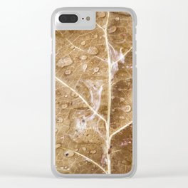 Raindrops on the leaf Clear iPhone Case