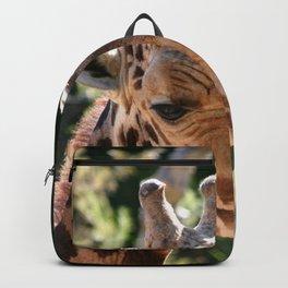 Baringo Giraffe Backpack