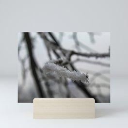 Hoarfrost on a branch Mini Art Print