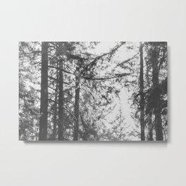 Mt Tabor Metal Print