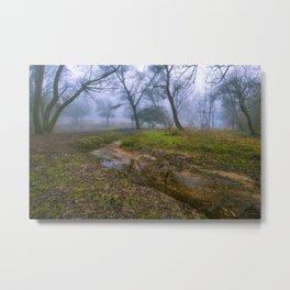 A walk in the mist Metal Print