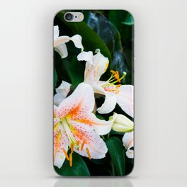 lilies and leaves iPhone Skin