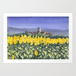 Sunflowers in Umbria Italy, watercolour Art Print